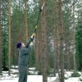 Fiskars UP80 priključek žage za veje